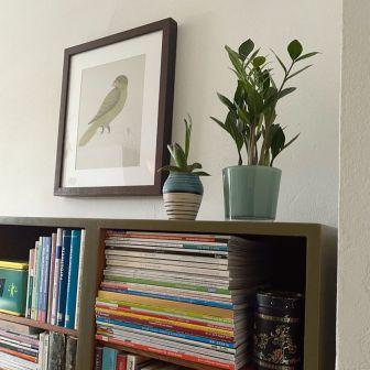Bookcase_Buecherregal_khakigruen_Moebelaktivistin_5